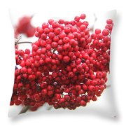 Mountain Ash Berries Throw Pillow