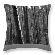 Mountain Aspens Throw Pillow