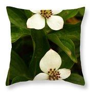 Mountain Berries Throw Pillow