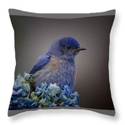 Mountain Bludbird Throw Pillow