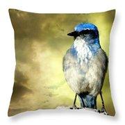 Mountain Bluebird Throw Pillow