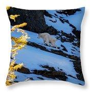 Mountain Goat And Larches Throw Pillow