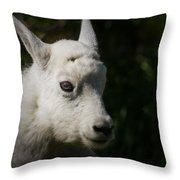 Mountain Goat Kid Portrait Throw Pillow