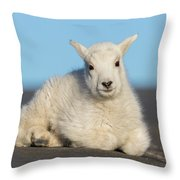 Mountain Goat Kid Relaxes In The Road Throw Pillow