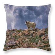 Mountain Goat Overlook Throw Pillow