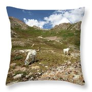 Mountain Goats At Columbine Lake - Weminuche Wilderness - Colorado Throw Pillow