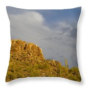 Mountain Guardians Throw Pillow