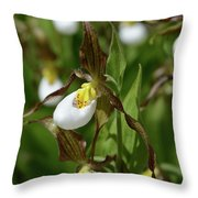 Mountain Lady Slippers Up Close Throw Pillow