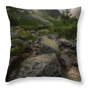Mountain Landscape With A Creek Throw Pillow