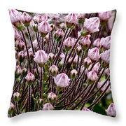 Mountain Laurel Bush Throw Pillow