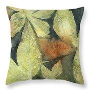 Mountain Leaves Throw Pillow