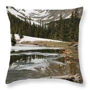 Mountain Magic Throw Pillow