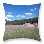 Mountain Meadow Above Cuba,nm Throw Pillow