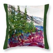 Mountain Meadow Wash Throw Pillow