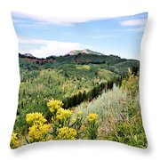 Mountain Meadows Throw Pillow