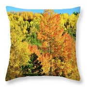 Mountain Of Color In Dillon Colorado Throw Pillow
