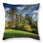 Mountain Parkway Throw Pillow