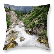 Mountain River Throw Pillow by Margaret Pitcher