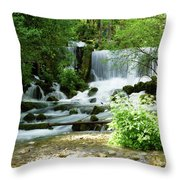Mountain River Spring Throw Pillow