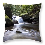 Mountain River Stream Throw Pillow