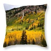 Mountain Side Autumn Throw Pillow