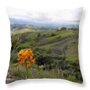 Mountain Side  Throw Pillow