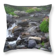 Mountain Stream Throw Pillow by Charles Robinson
