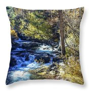 Mountain Stream In Fall Throw Pillow