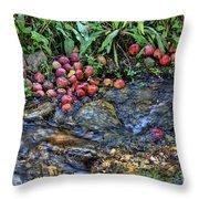 Mountain Stream In Oak Glen Throw Pillow