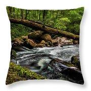Mountain Stream Iv Throw Pillow