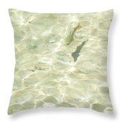 Mountain Stream Trout Throw Pillow