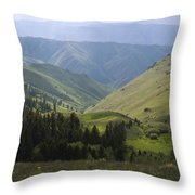 Mountain Top 6 Throw Pillow