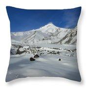 Mountain Tracks Throw Pillow