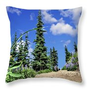 Mountain Trail - Olympic National Park Throw Pillow
