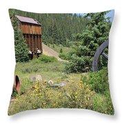 Mountain Treasures 3 Throw Pillow