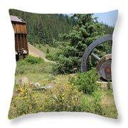 Mountain Treasures 4 Throw Pillow