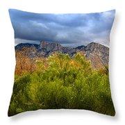 Mountain Valley No33 Throw Pillow
