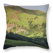 Mountain View From Gothic Road Throw Pillow