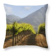 Mountain Vineyard Throw Pillow