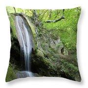 Mountain Waterfall Spring Nature Scene Throw Pillow