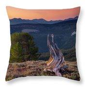 Mountain Wood Formation Throw Pillow