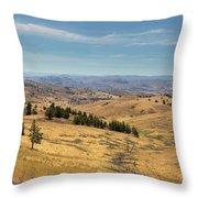 Mountainous Terrain In Central Oregon Throw Pillow