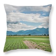 Mountains And Fields Throw Pillow