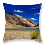 Mountains And Green Vegetation Chagor Tso - Lake Leh Ladakh Jammu Kashmir India Throw Pillow