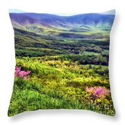 Mountains And Valleys Throw Pillow