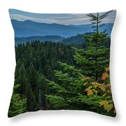 Mountains Around Priest Lake Throw Pillow