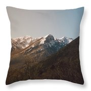 Mountains In The Background Xviii Throw Pillow