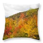 Mountains In The Fall Colors Throw Pillow