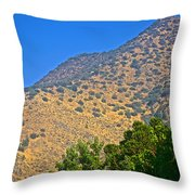 Mountainside From Wealthy Neighborhood Above Santiago-chile Throw Pillow