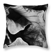 Mounts Botanical Garden 2363 Throw Pillow